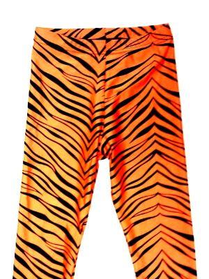 Orange Zebra Capris